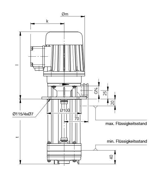 Abmessungen Eintauchpumpe PRG0601